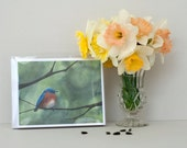 Assorted Note Cards- 8 Note Cards with Envelopes, Four Assorted Bird Paintings- Watercolor Art by Laura D. Poss