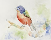 Bird Painting.Original Watercolor Painting, red, blue green, Home Decor, Bird Wall Art, Painted Bunting