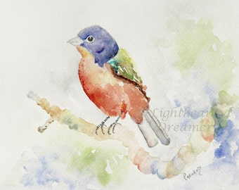 SALE, Original Bird Painting, red, blue green, Original Watercolor Painting, Home Decor, Bird Wall Art, Painted Bunting
