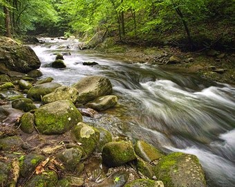 Oconaluftee River a Mountain Stream in the Great Smoky Mountain National Park in North Carolina No.517 - A Fine Art Landscape Photograph
