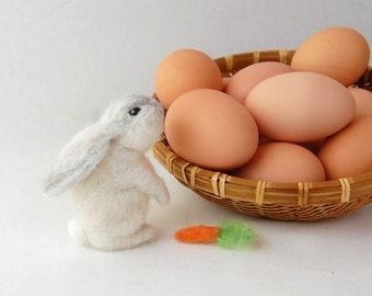 Needle Felted Bunny. Lop Bunny. Felt Animal Toy. White Bunnies. Needle Felted Rabbit. Cute Bunny Rabbits. White Bunny Toy. Bunny Baby Shower