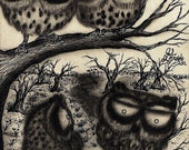 Sooty Owls - 5X7 framed art print