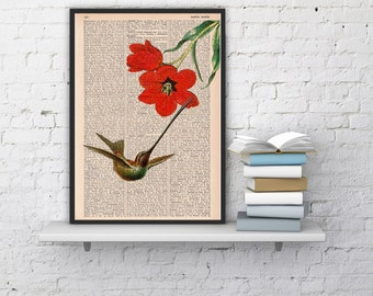 Hummingbird and the red tulip -book page print-upcycled book sheet art BPAN122