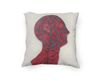 Veins of the Head Pillow, color anatomic illustration printed pillow, Paper art printed pillow, Velveteen Pillow Cover Only