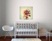 nursery  decor, dahlia, flower photography, color photograph, still life, canvas  -  Peachy, gallery canvas art