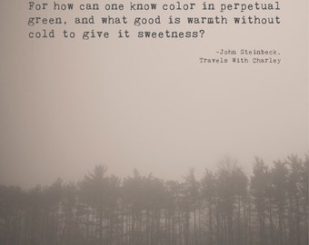 10 Of The Greatest Quotes By John Steinbeck