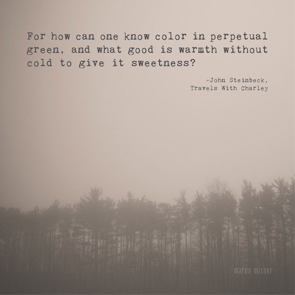 Steinbeck Quotes: Inspirational Quote Art John Steinbeck Quote Travels With