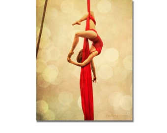 Aerialist Gallery Wrap Canvas Art, Aerial Silks Acrobat Dance Photography, Rich Red Golden Champagne Lights, Circus Performer Portrait Photo