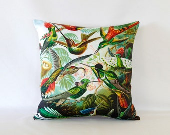ON SALE: Haeckel's Hummingbirds Pillow Cover - Vintage Natural Science Art Printed on Fabric
