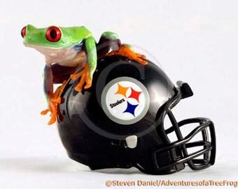 Pittsburgh Steelers - Steelers Helmet  - Steelers Art - LIVE Frog