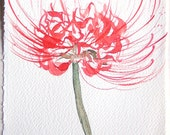 Red flower watercolor painting. Watercolor original. Floral illustration. Art floral. Small watercolors. Home decor, Kitchen decor.