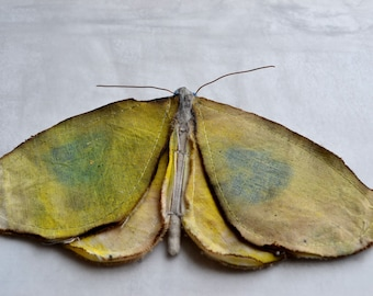 SOLD OUT ELSEWHERE Soft Moth fabric Sculpture