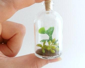 Miniature Terrarium, Succulent Terrarium, Faux Terrarium, Bottle Terrarium, Small Terrarium, Miniature Garden, Garden in a Bottle, Succulent