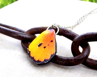 Yellow Butterfly Wing Necklace, Butterfly necklace, Butterfly Jewelry, Butterfly wing necklace, summer jewelry, Yellow butterfly