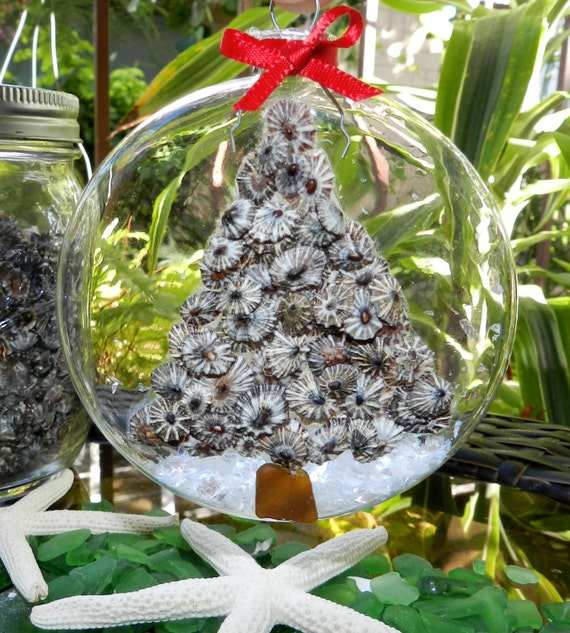 Opihi Shell Ornament With Beach Glass Ornament Hawaiian