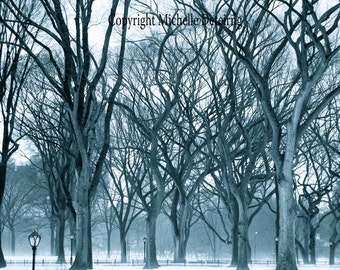 Central Park Photography, New York City Photography, New York City Art, Central Park Art, NYC Winter, Tree Photography, Dreamy New York
