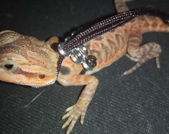 Starter Harness for a BABY Bearded Dragon (< 4 months old)