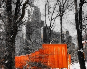 Gates by Christo in Central Park and Snow, NYC, Winter Landscape