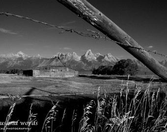 Mormon Row Barn (black & white) ~ Grand Teton National Park - photographic print