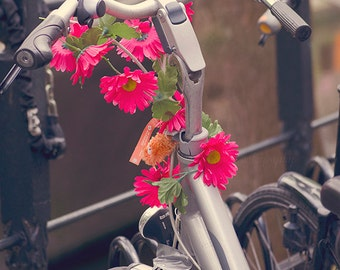 Dutch Bicycle, Netherlands Photography Print for Home Decor - Utrecht Bike, Amsterdam, Pink Flowers, Dreamy Summer