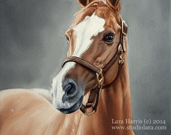 Custom Horse Painting in Oil by Lara Harris 36X48 (3 ft by 4ft)  FREE SHIPPING XL Extra Large