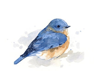 Bluebird watercolor painting - bird print 5x7