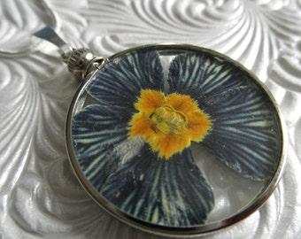 Zebra Primrose-Purple-White Striped Pressed Flower Looking Glass Pendant Between Glass-February BirthFlower Symbol First Love-Gifts Under 30