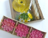 Emkay Candle Holder Set and Floating Flower Lites Candles Summer Party Patio Porch Deck Decor Pink Yellow Hostess Gift Idea