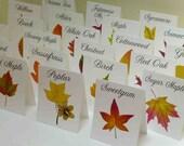 Autumn Leaf Table Cards, Autumn Leaf Table Tents, Autumn Wedding Table Cards, Thanksgiving Table Card, Autumn Fall Event, Harvest Table Card