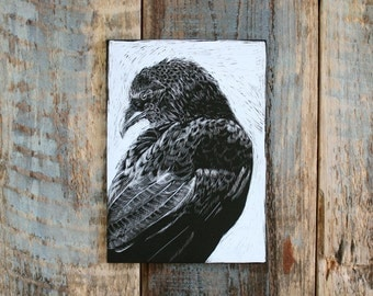Black and White Animal Art, Crow, Raven, Realistic Original Artwork