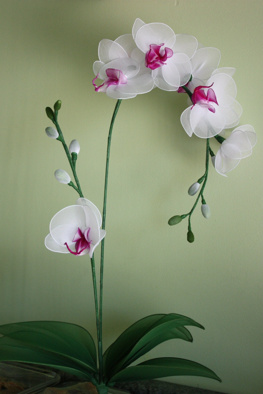 Орхидея из капрона и проволоки мастер класс фото поэтапно