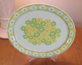 Franciscan Picnic Large 14-inch Oval Serving Platter Vintage 1970s