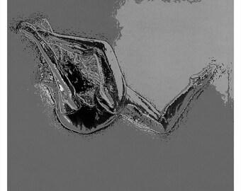 Diving Dancer Modern Dance Art Print & Canvas Print