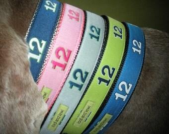 12th Dog Collar