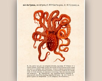 Common Octopus Print, Vintage octopus image print, Dictionary text Nautical art,  Coastal Living, beach cottage decor