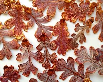 One Copper Medium REAL Oak Leaf Pendant - Asymmetrical-