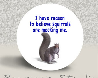 I Have Reason to Believe Squirrels are Mocking Me - PINBACK BUTTON or MAGNET - 1.25 inch round
