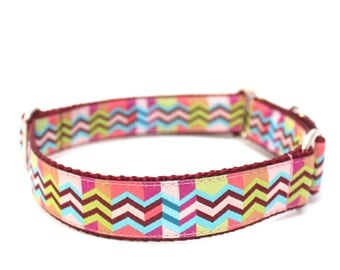 """1"""" The Patchwork Girl buckle or martingale dog collar"""