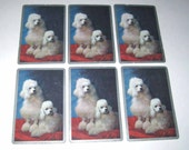 Vintage Playing Cards with Photograph of White French Poodle Dogs with Silver Borders Set of 6