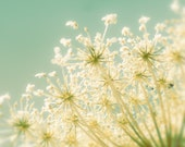 Teal accent, pastel shades, rustic decor, queen annes lace, blue green, flower photography, modern wall decor, dreamy, wall art