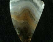 Prudent Man Plume Agate Freeform Cabochon from Idaho 37x28x6mm