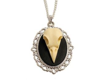 Raven skull necklace gothic bird Cameo resin replica taxidermy goth steampunk pendant
