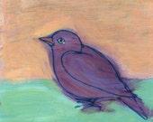 Purple Bird on Peach and Aqua Green - original painting, small painting, fine art by Irene Stapleford - wantknot shop
