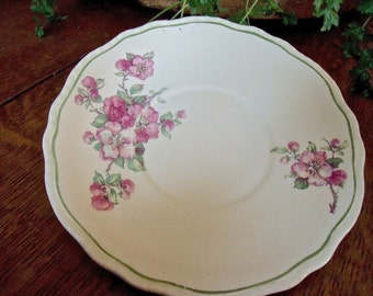 """PLATE-STEUBENVILLE """"Ivory"""" 6 1/2""""plate or saucer-pink dogwood or wild rose pattern-so PRETTY"""