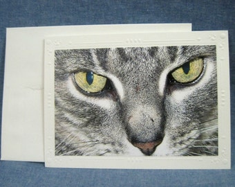 Photo Greeting Card, Blank Inside, Featuring Up Close Tabby Kitty Cat Face, Gold Eyes, 5x7 Size Card, 4x6 Size Photo Can Be Framed