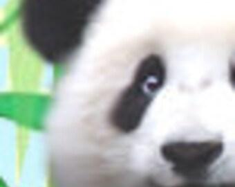 OOAK Beautiful Panda bear premade Etsy Shop banner with free avatar