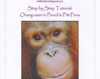 Step by Step Art Tutorial - Orangutan in Coloured Pencil and Pitt Pens