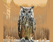 Great Horned Owl Art Bird Earth Tones Digital Woodland Animal Wilderness Sepia Brown Rust Wildlife Rustic Home Decor Giclee Print 11 x 14