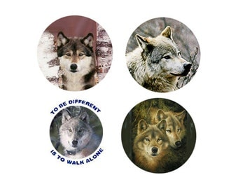 Wolf Magnets:  4 Cool Wolves for your home, your collection,  or to give as a unique gift