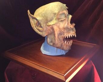 Nosferatü head, anatomical section